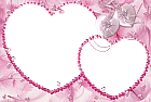 Pink Heart Transparent Frame